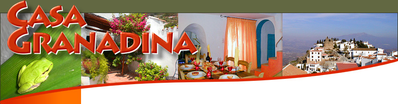 Bed and Breakfast Malaga, Andalucia Spain. Charming cheap accommodation with good food.