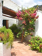 Green and fresh terrace Booking info for rural accommodation Comares